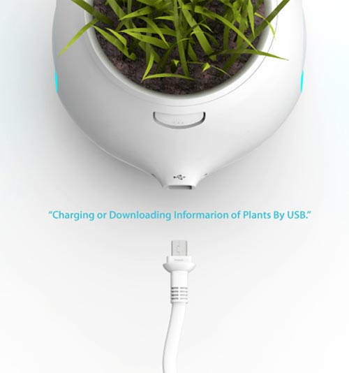 digital plant pot