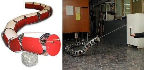 annakonda robotic snake