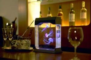 Cool Gadgets – The Aquapict LED Jellyfish Aquarium