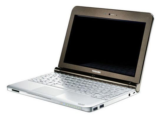 Toshiba Mini NB200 Netbook