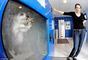 The Do-o-Matic – Dog Washing Machine