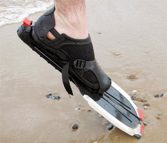 flippers_3