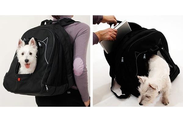 Pet Laptop Backpack