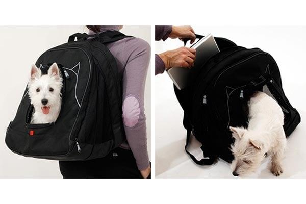 Pet Laptop Backpack