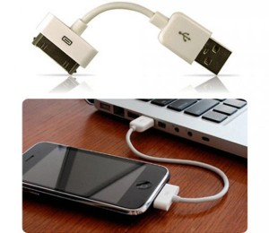 iStubz iPhone / iPod Cable