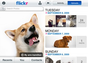 Official Flickr iPhone App Launched