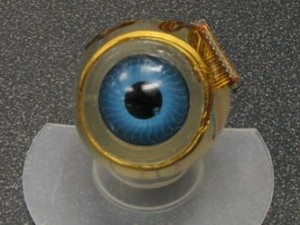 MIT's Eyeball Microchip designed to restore sight