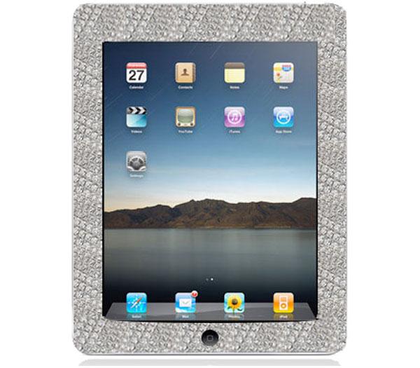 The $20,000 Apple iPad