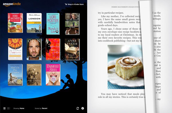 Amazon Kindle iPad App
