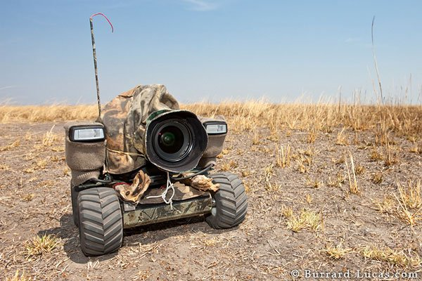 BeetleCam The All Terrain Camera
