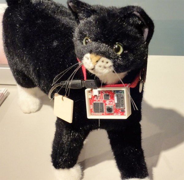 Sony's Latest Gadget Lets Your Cat Use Twitter