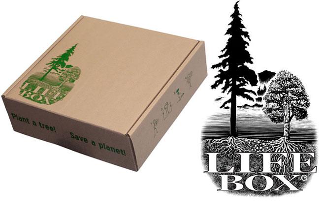 Life Box