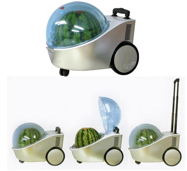 Portable Watermelon Cooler