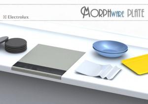 Morphware Plate Concept is Plain Weird