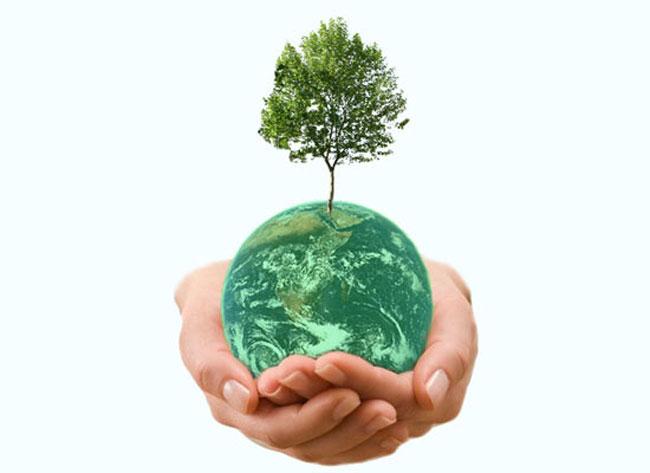 Green Ranking Scheme