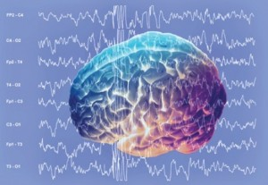Scientist Says Brainwave Readings Could Snag Terrorists