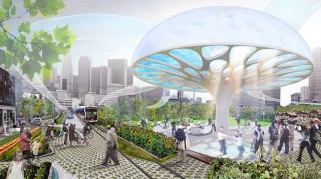 Gaint Mushroom Concept Tackles La S Black Water