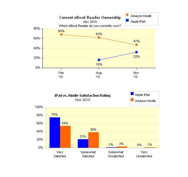 kindle ipad market share