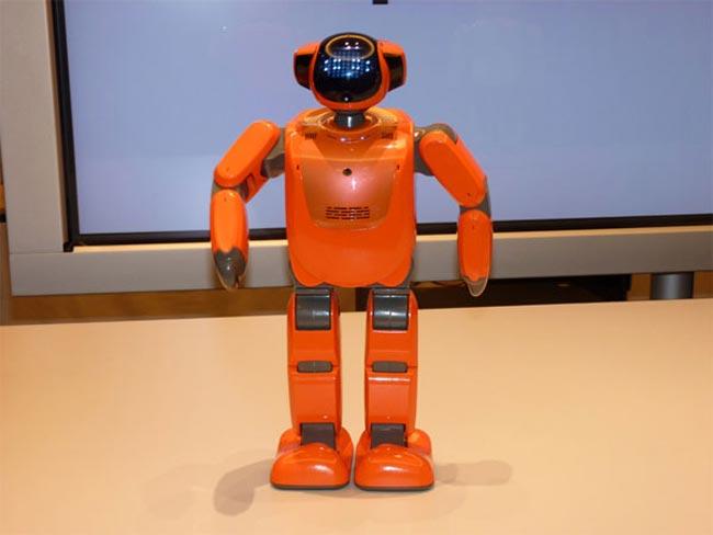 PALRO Robot