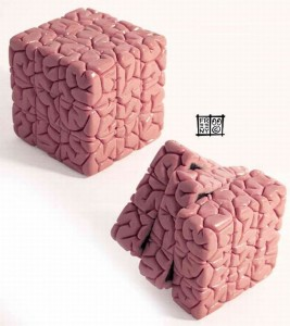 Brain Cube Is A Rubiks Cube For Brainiacs