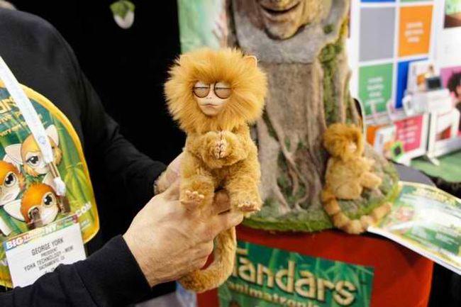Tandars monkey