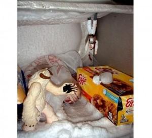 Luke Skywalker Is In Your Freezer And He Needs Help