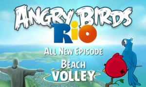 Angry Birds Rio Beach Volley Ball