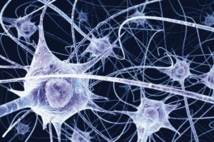 Researchers Create AI For DNA Neural Network