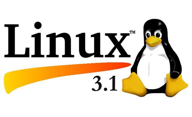 Linux Kernel 3.1