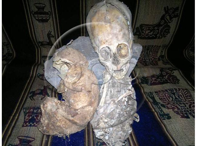 Cusco Mummy