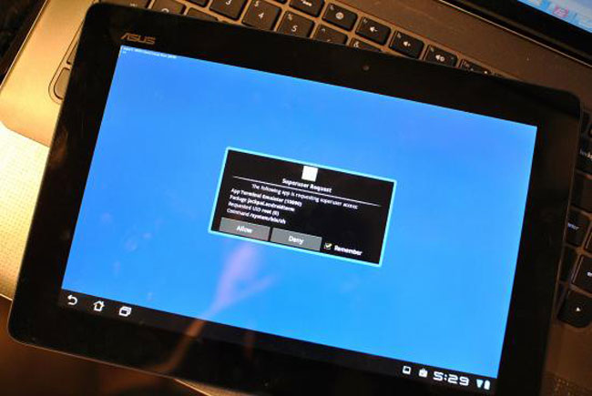 Transformer Prime Rooted