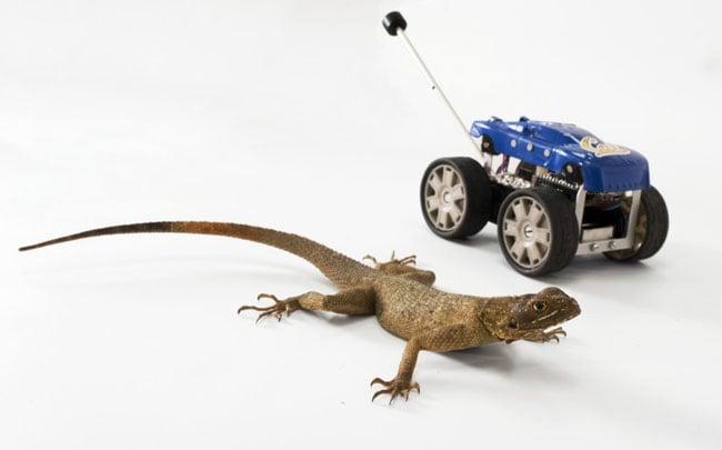 Leaping Lizard Robot