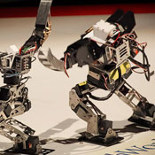 Mini Humanoid Robots Battle For The Robo-One 2012 Championship Title (video)