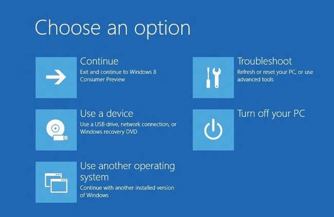 Windows 8 Boot Options