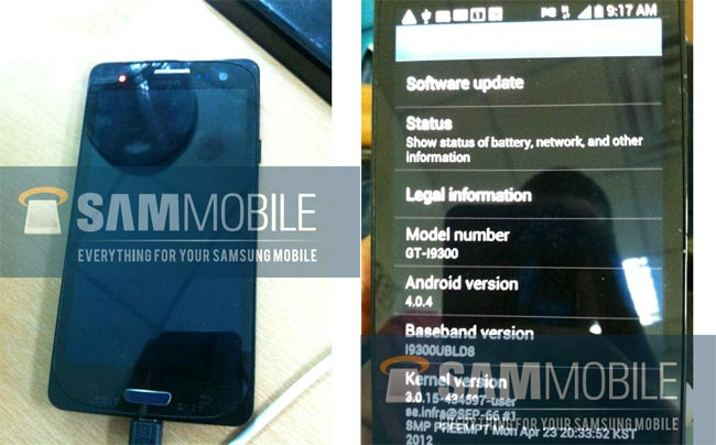 Another Samsung Galaxy S III Poses For The Camera