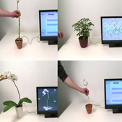 Disney Researchers Create Multitouch Controllers From Plants (video)