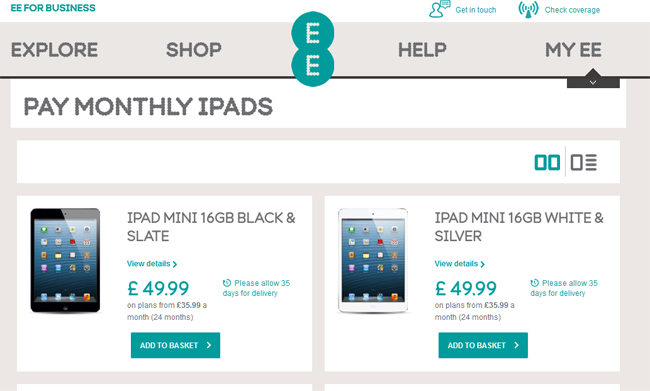 iPad Mini EE