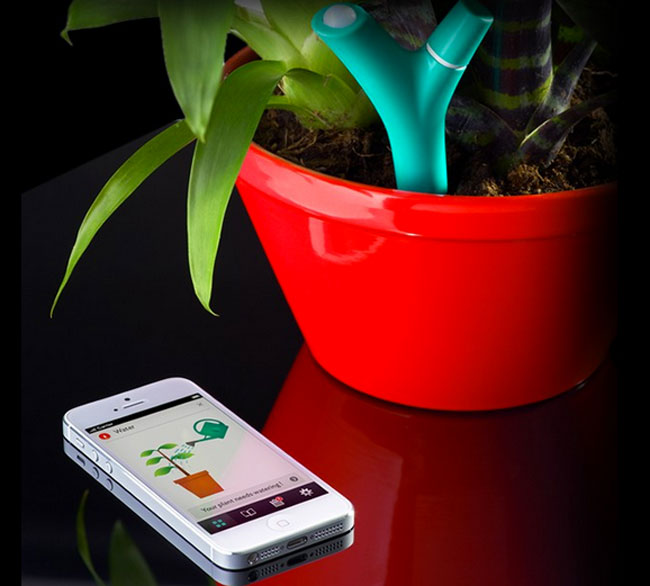 parrot flower power monitors your plants health using your smartphone video. Black Bedroom Furniture Sets. Home Design Ideas