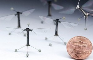 Robo-Fly The World's Smallest Flying Robot Insect Demonstrated
