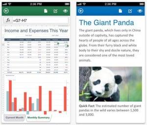 Microsoft Office Mobile app