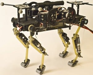 Robo Kitties! Created By Swiss Scientists (video)