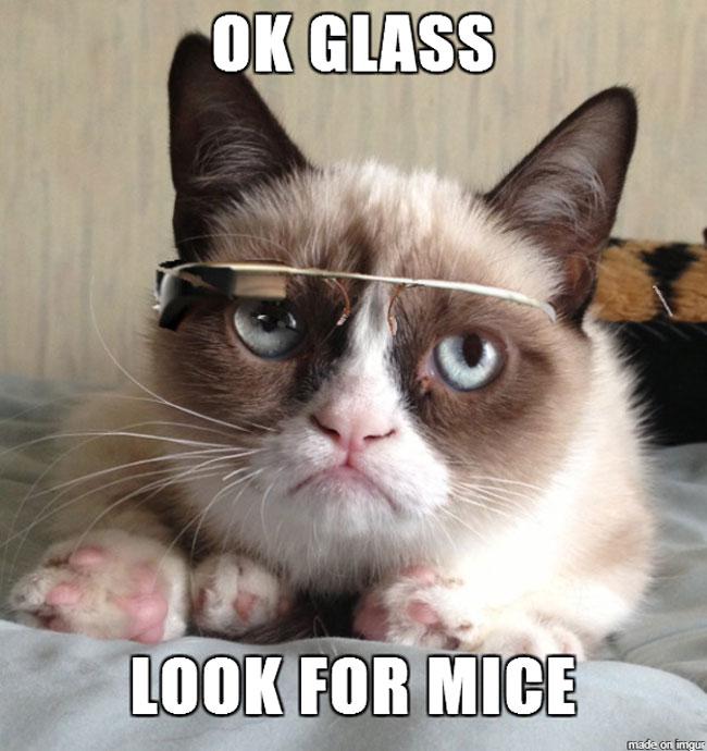 glass-meme