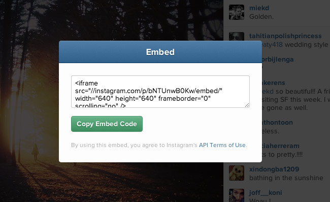 instagram web embed feature now available to use