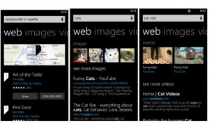Bing Windows Phone 8 Update Adds New Design And Search Features