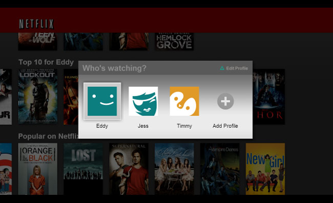 Netflix Multiple User