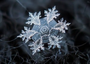 Homemade Macro Camera Rig Captures Awesome Snowflake Photos
