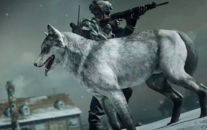 Call of Duty Wolf Skin DLC