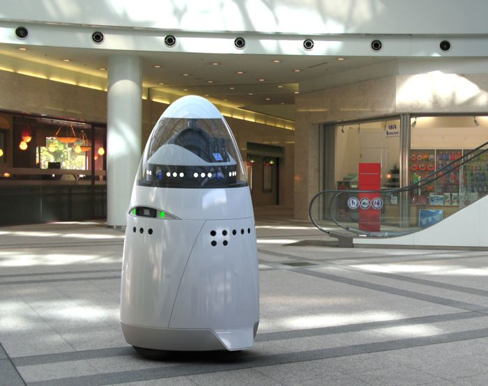 Robot Security Guards