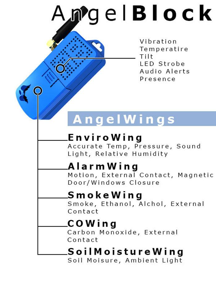 angle-wings