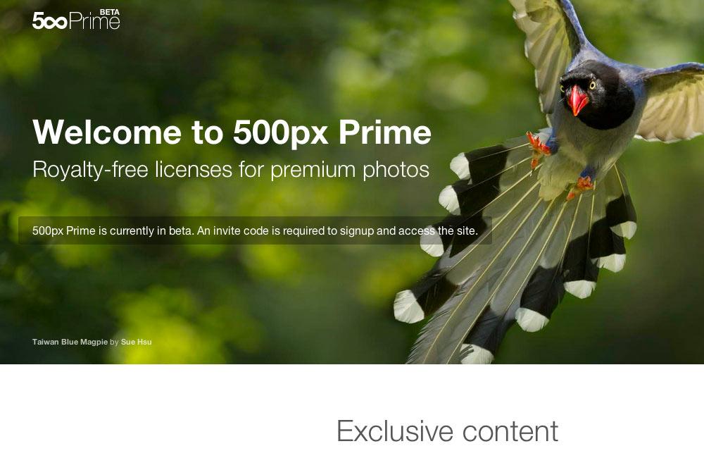 500px Prime
